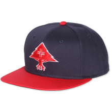 LRG Treesearch Snapback, Red